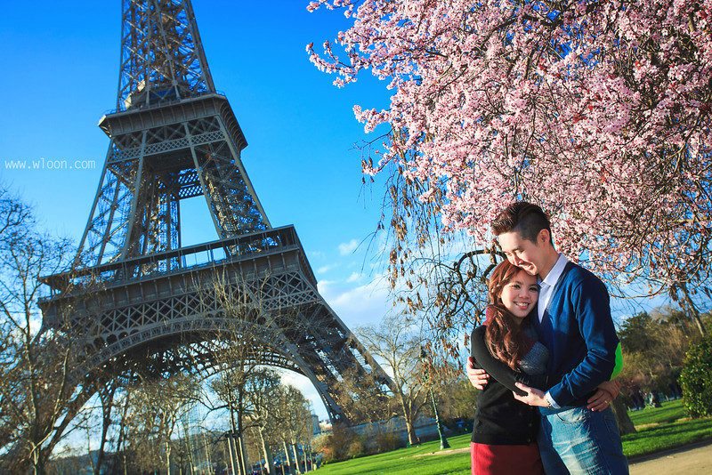 paris cherry blossom