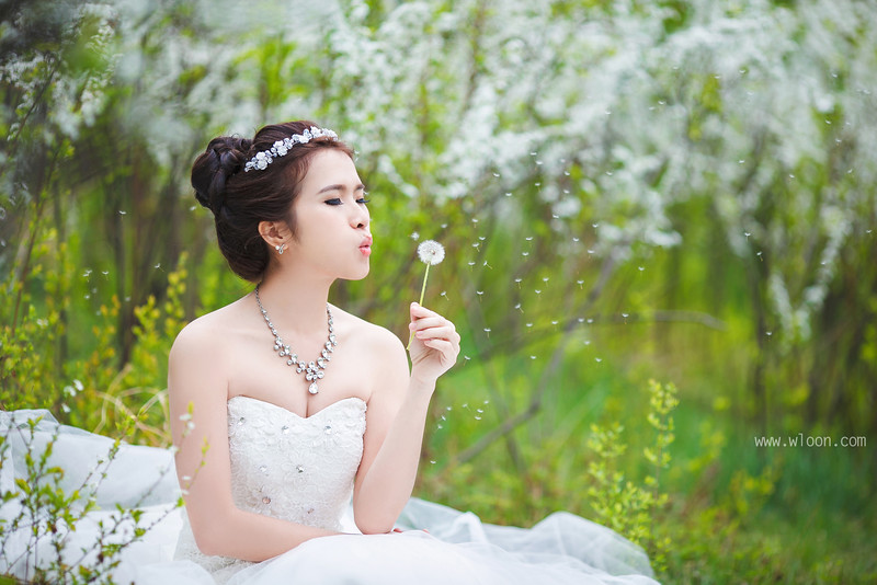 korea bridal photoshoot