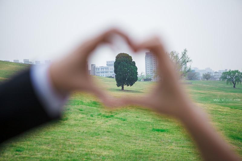 seoul alone tree