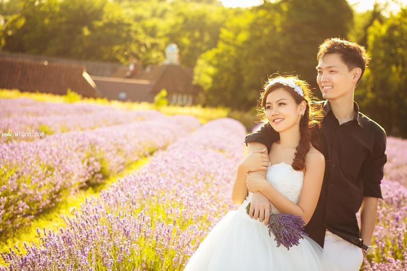 lavender pre wedding