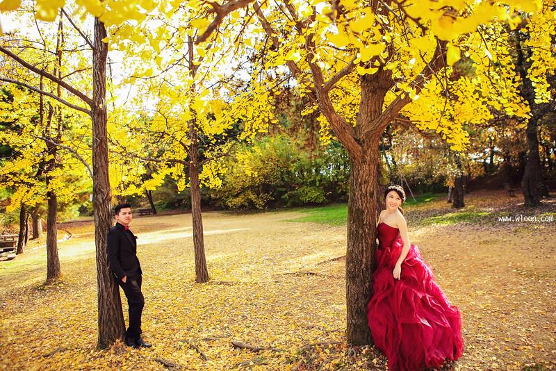autumn pre weddin